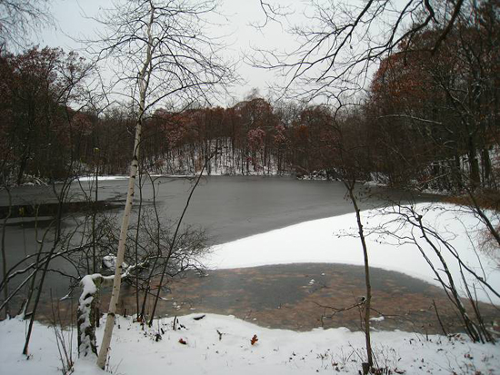Greenbrook in Winter